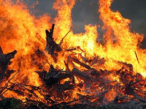 На Житомирщині горять суха трава, будинки і люди