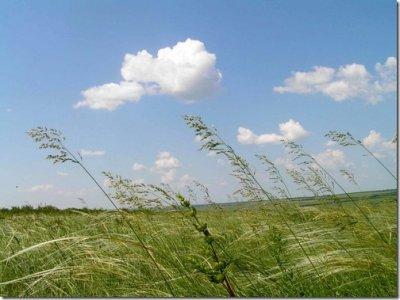 Микола Присяжнюк: Завершення земельної реформи відбудеться виключно в інтересах села та селянина