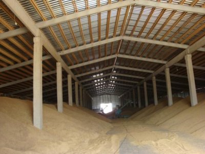 В Андрушівці зі складу вкрали 3,5 тони пшениці