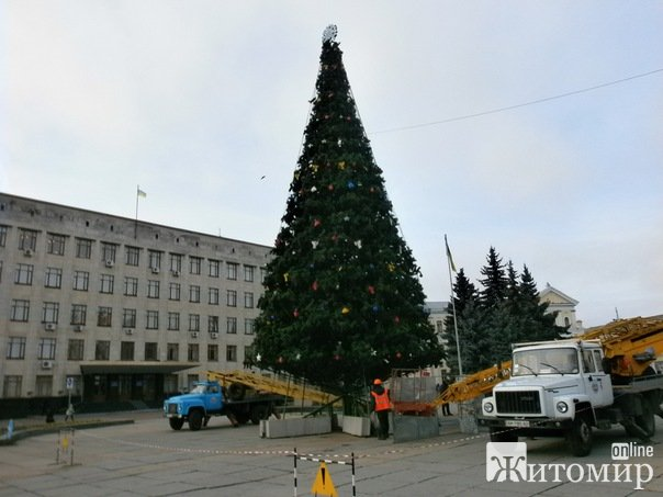 В Житомирі прикрасили головну новорічну ялинку. ФОТО. ВІДЕО.