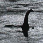 Оператору вдалося зняти на озері справжнє чудовисько. ВІДЕО