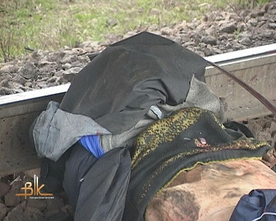 Жахлива трагедія на Житомирщині: Чоловік ліг під потяг. ФОТО. ВІДЕО.