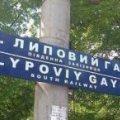 """У Харкові з'явилася залізнична станція """"Липовий гей"""" ФОТО"""