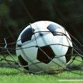 Євро-2012. Група B. Нідерланди - Данія - 0:1. Перша сенсація турніру. ВІДЕО