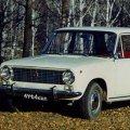 На Житомирщині ледь не вкрали автівку
