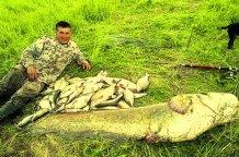 На Волині рибалка виловив гігантського сома розміром з людину