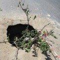 В Житомирі знову провалився асфальт, утворивши велику яму. ФОТО
