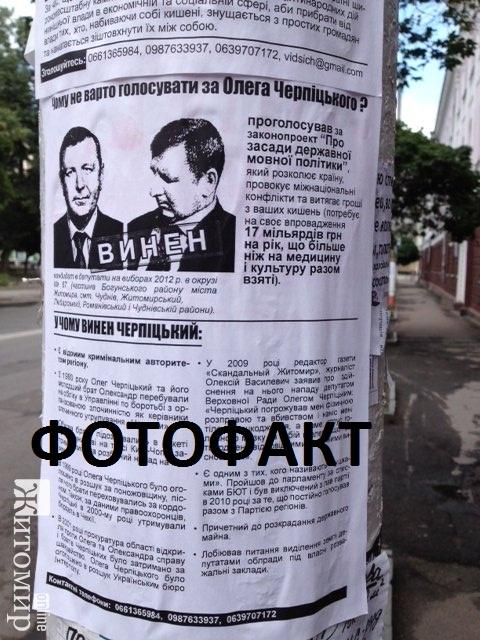 Житомирського депутата «розвісили» на стовпах
