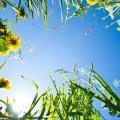 Житомирщині обіцяють вихідні зі зливами й грозами