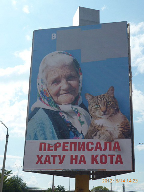 """Власниця борда """"бабусі з котом"""" у реанімації"""