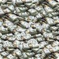На Житомирщині за заволодіння бюджетними коштами засуджено начальницю райдержнасінінспекції