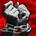 Житомирянин продавав співвітчизників в рабство