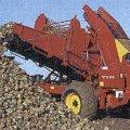 На Житомирщині затримано двоє чоловіків, які намагалися викрасти з поля 5 тонн цукрових буряків