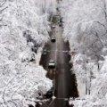 1 грудня Житомир зустріне справжню зиму зі снігом та морозом