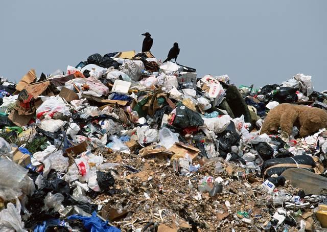 1700 грн. - штраф за стихійне сміттєзвалище