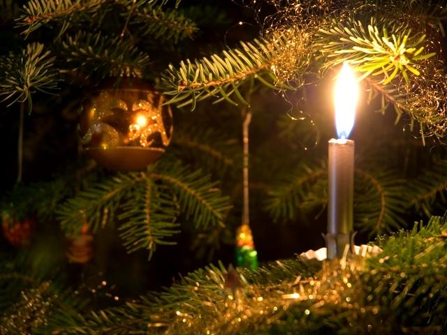 Житомирянам заборонили прикрашати ялинки свічками