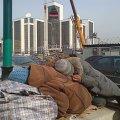 Житомирских бездомных решили убрать с улиц