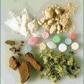 Наркотиків на два мільйони гривень спалили на Житомирщині