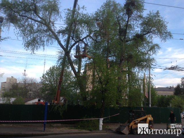 """Через будівництво чергового магазину """"АТБ"""" у центрі Житомира знищують сквер. ФОТО"""