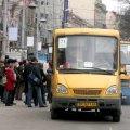 У Новограді-Волинському пільговики безкоштовно їздитимуть у маршрутках