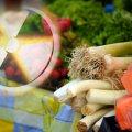 На Житомирщині вирощують найбільш забруднену радіонуклідами продукцію