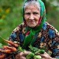 На Житомирщині злодії вкрали у старенької бабусі 3 тисячі гривень