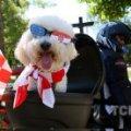 Хорватія святкує приєднання до Євросоюзу