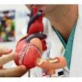 Серця у Житомирі почали обстежувати через стравохід