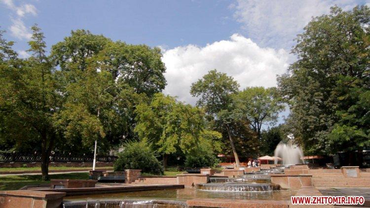 «Покращення» добралося до Старого бульвару в Житомирі – хочуть вирубати більше сотні дерев. ВІДЕО