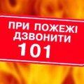 На Житомирщині у вогняну пастку потрапило десяток свиней та автомобіль