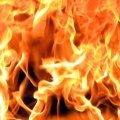 Червоноармійський район: під час пожежі у житловому будинку загинула людина