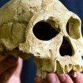 Знахідка вчених поставила під сумнів прийняту теорію еволюції людини
