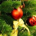 Житомиряни на Новий рік відпочиватимуть сім днів поспіль