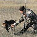Бой без правил. Почему в Украине падает уровень культуры охоты