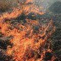 На Житомирщині під час пожежі згоріло 30 тон соломи