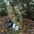 14-річна британка вбила себе в парку через знущання в школі