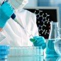 Ученые нашли ген, заставляющий ткани восстанавливаться, как в юности
