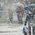 Після теплих вихідних в Україну прийдуть сильні дощі, які змінять сніг та ожеледь