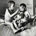 У Житомирі ВО «Свобода» в кінотеатрі «Україна» проводить виставку про Голодомор 1932 – 1933 років