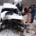 У Житомирській області водій врізався в дерево і загинув
