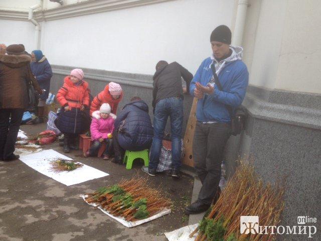 Житомиряни святкують Вербну неділю. ФОТО
