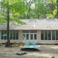 На Житомирщині дітей на відпочинок можуть прийняти 538 пришкільних таборів