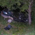 Ночью в Житомире два 19-летних парня на Peugeot врезались в дерево, есть пострадавшие