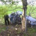 В Житомирской области Lanos врезался в дерево, погиб 28-летний водитель