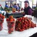 Першу полуницю на Житньому ринку продають по 30 грн за кілограм