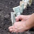"""Житомир: нова нормативно-грошова оцінка оренди землі чи просто """"обдирайлівка"""" від керівників міста?"""