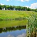 У Житомирській області киянину не дозволили продовжити оренду двох ставків