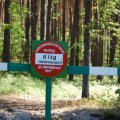 У лісах Житомирщини – висока пожежна небезпека