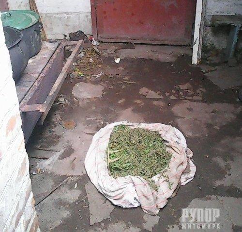 У домогосподарстві жителя Черняхівщини міліціонери виявили наркосушку
