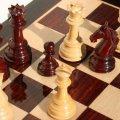 В Житомирі проведуть чемпіонат України з шахів